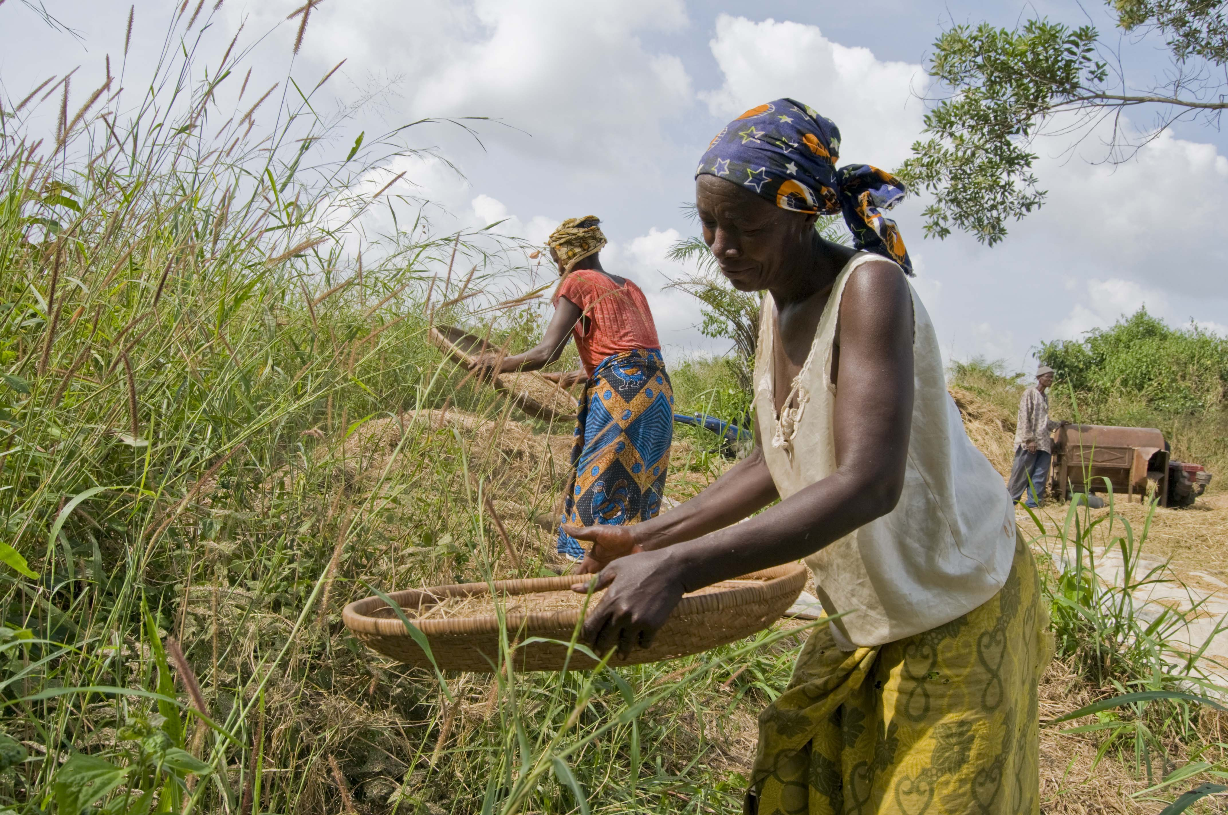 World Food Day: Innovation Must Support Family Farmers