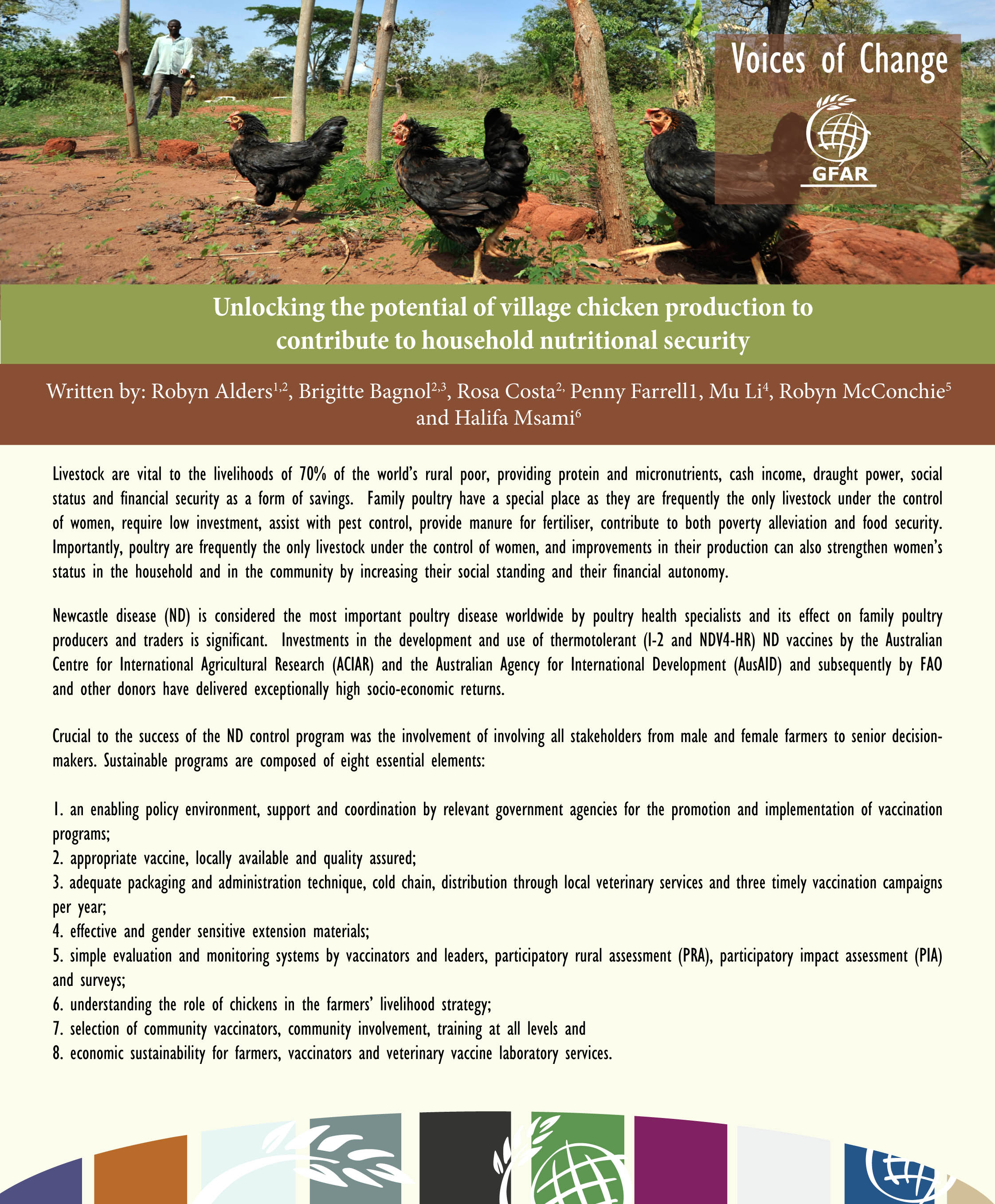 Unlocking the potential of village chicken production