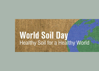 Healthy soil: the foundation for healthy people and landscapes