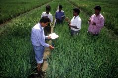 Open Access to Agricultural Knowledge for Inclusive Growth