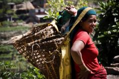Women's Empowerment in Agriculture, Production Diversity and Nutrition