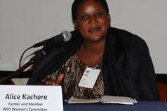Alice Kachere