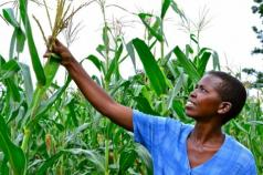 Funding Female Farmers for a Less Hungry World