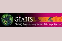 GIAHS International Forum and Joint Meeting