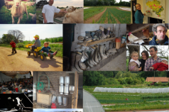 """Introducing a new initiative from Belgium: """"TupperTerre"""""""