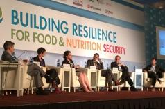 IFPRI 2020 Conference: Building Resilience for Food and Nutrition Security