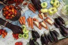 FAO sends message on the global need for agroecology