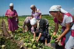 The voice of civil society in climate smart agriculture